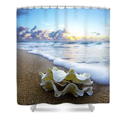Clam Foam Shower Curtain by Sean Davey