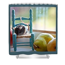 Clara's Favorite Chair Shower Curtain