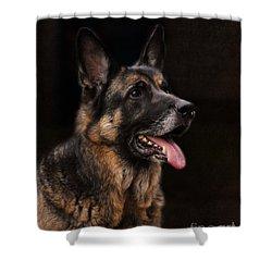 Classic German Shepherd Shower Curtain by Jai Johnson
