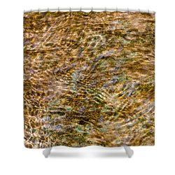 Clean Stream 2 - Featured 3 Shower Curtain by Alexander Senin