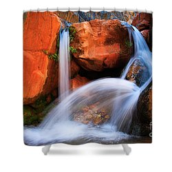 Clear Creek Falls Shower Curtain by Inge Johnsson