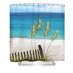 Shower Curtain featuring the drawing Clear Water Florida by Anthony Fishburne