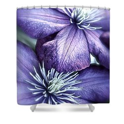 Clematis Shower Curtain by Linda Bianic