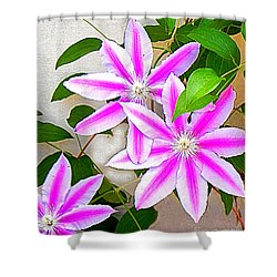 Clematis Trio Shower Curtain