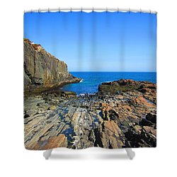 Cliff House Maine Coast Shower Curtain