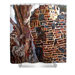 Clinker Wall Shower Curtain by LaVonne Hand