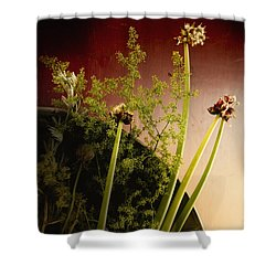 Clipped Stems Shower Curtain by Margie Hurwich