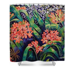 Clivias In Bloom Shower Curtain by Caroline Street