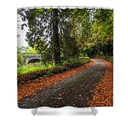 Clondegad Country Road Shower Curtain