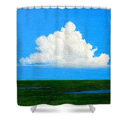 Shower Curtain featuring the painting Cloud Over Wetlands by Jim Whalen
