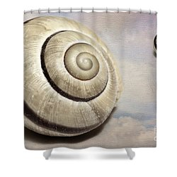 Cloud Shells Shower Curtain
