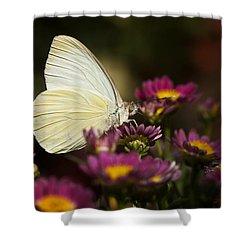 Cloudless Sulphur Butterfly  Shower Curtain by Saija  Lehtonen