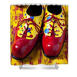 Clown Shoes And Balls Shower Curtain by Garry Gay
