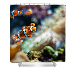 Clownfish  Shower Curtain by Ulrich Schade