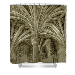 Cluny Museum Ceiling Detail Shower Curtain