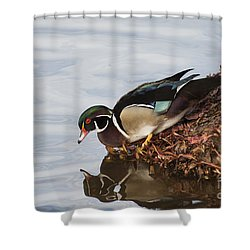 C'mon In The Waters Fine Shower Curtain by Ruth Jolly