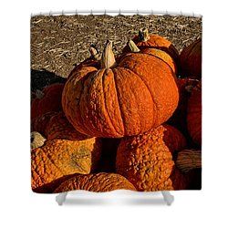 Shower Curtain featuring the photograph Knarly Pumpkin by Michael Gordon