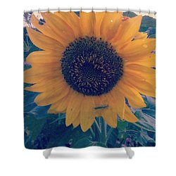 Shower Curtain featuring the photograph Co-existing by Thomasina Durkay