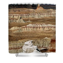 Coal Mine Mesa 19 Shower Curtain