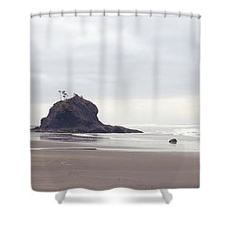 Coast La Push Olympic National Park Wa Shower Curtain by Panoramic Images