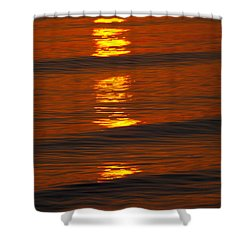 Coastal Abstract Shower Curtain by Karol Livote