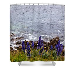 Coastal Cliff Flowers Shower Curtain