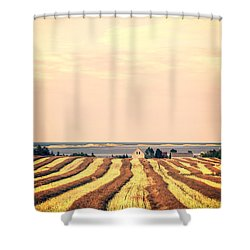 Coastal Farm Pei Shower Curtain by Edward Fielding