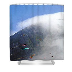 Coastal Kites Shower Curtain