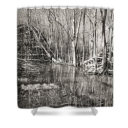 Coaster Reflections Shower Curtain