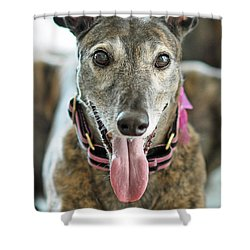 Shower Curtain featuring the photograph Cobra by Lisa Phillips