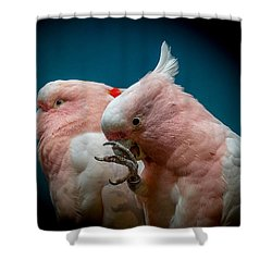 Cockatoos Shower Curtain by Ernie Echols