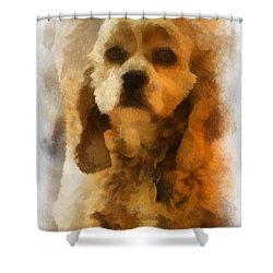 Cocker Spaniel Photo Art 04 Shower Curtain by Thomas Woolworth