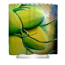 Coconut In Bloom Shower Curtain
