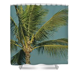 Cocos Nucifera - Niu - Palma - Po'olenalena Beach Maui Hawaii Shower Curtain by Sharon Mau