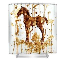 Coffee Foal Shower Curtain by Zaira Dzhaubaeva