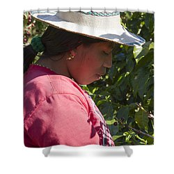 Coffee Harvest Time Shower Curtain by Heiko Koehrer-Wagner