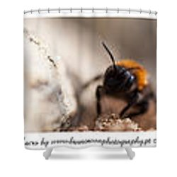 Colage Of Macro Shower Curtain