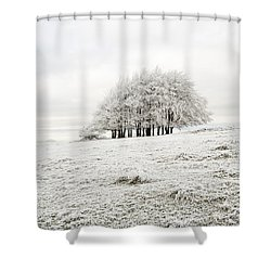 Cold Shower Curtain by Anne Gilbert