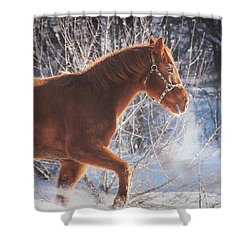 Cold Shower Curtain