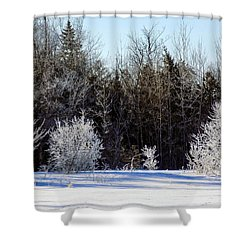 Cold Magic Shower Curtain