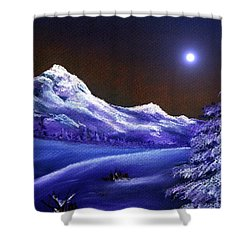 Cold Night Shower Curtain by Anastasiya Malakhova