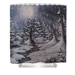 Shower Curtain featuring the painting Cold Snap by Megan Walsh