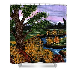 Coldest Mountain Brook Shower Curtain by Barbara Griffin