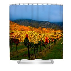 Colibri Morning Shower Curtain