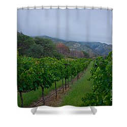 Colibri Vineyards Shower Curtain