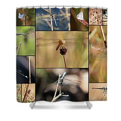 Collage Marsh Life Shower Curtain