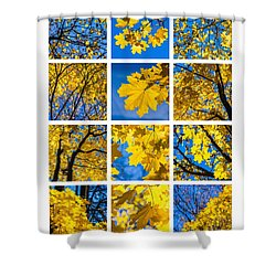Collage October Blues Shower Curtain by Alexander Senin