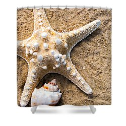 Collecting Shells Shower Curtain