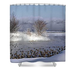 Collingwood Terminal Building In Winter  Shower Curtain