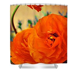 Color 149 Shower Curtain